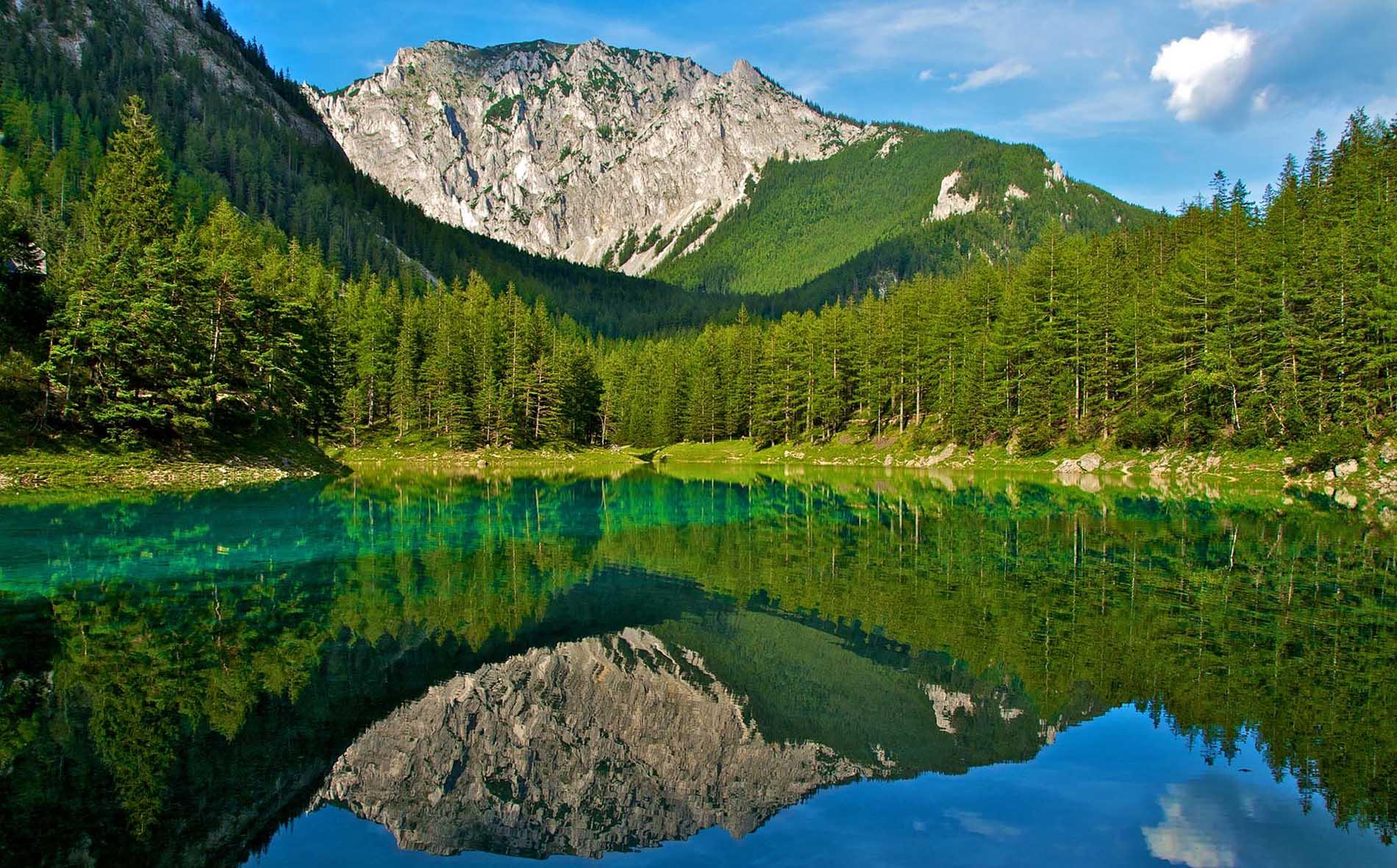 """Bất ngờ với vẻ đẹp công viên Áo được ví như """"chốn thần tiên"""", mỗi năm chỉ xuất hiện 6 tháng và lại... biến mất"""