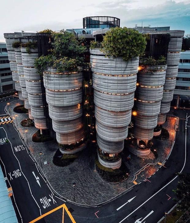 Mắt tròn mắt dẹt khám phá tòa nhà hình dáng giỏ Dimsum đang làm mưa làm gió ở Singapore