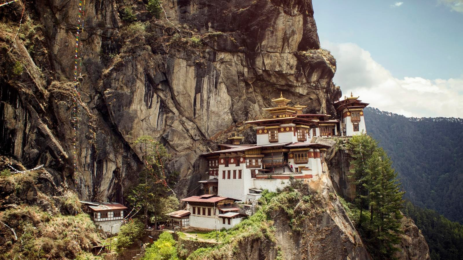ve may bay gia re American Airlines đi Bhutan
