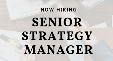 Strategy Senior Manager/Associate (HCM)