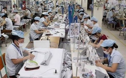 Canada will be potential market for Vietnamese export garments
