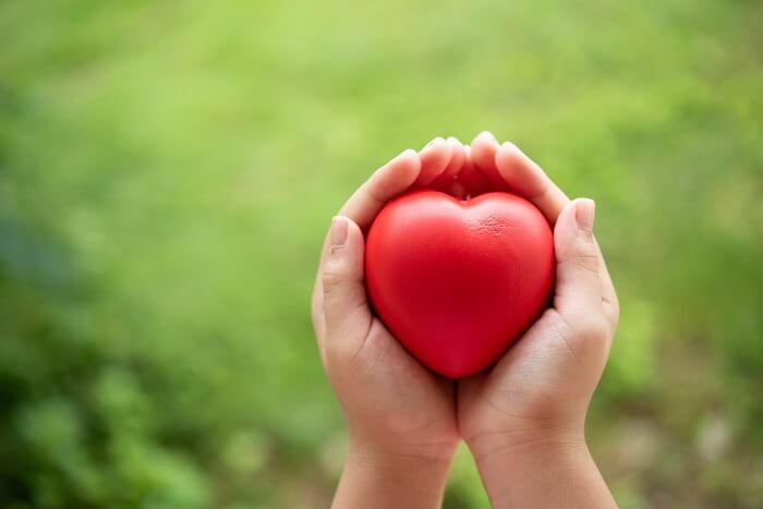 Ăn óc chó giúp bảo vệ tim mạch
