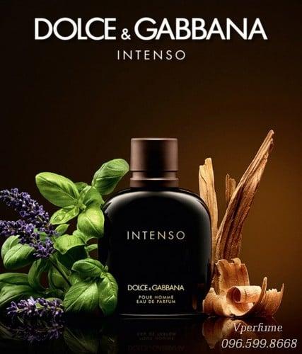 Mô tả mùi hương D&G Pour Homme Intenso EDP