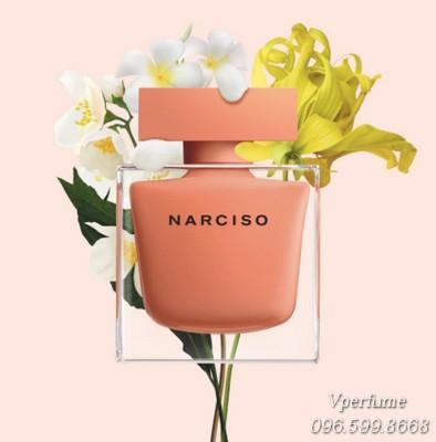 Đánh giá mùi hươngNarciso Ambre