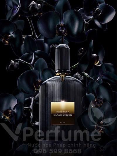 nước hoa Tom Ford Black Orchid EDP