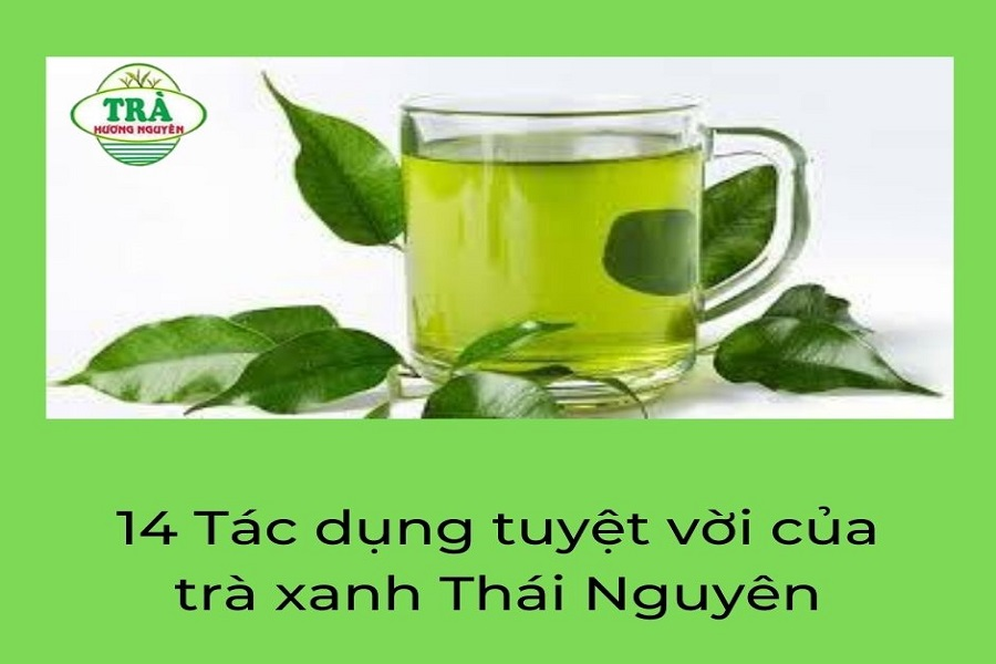 14 Tác dụng tuyệt vời của trà xanh Thái Nguyên