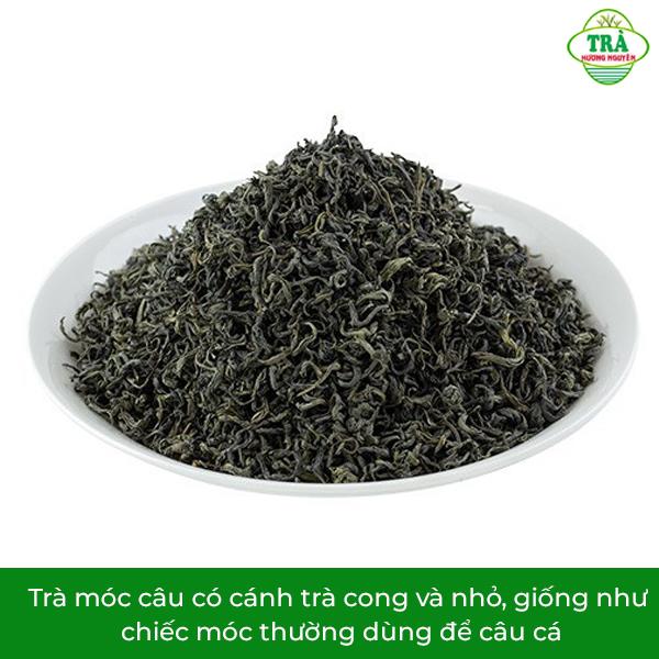 hình dáng của trà móc câu Thái Nguyên