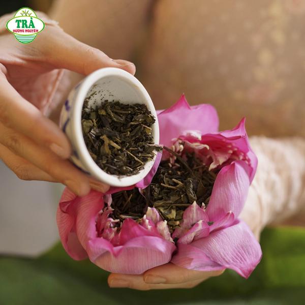 cách ướp trà sen sao khô từ trà xanh Thái Nguyên