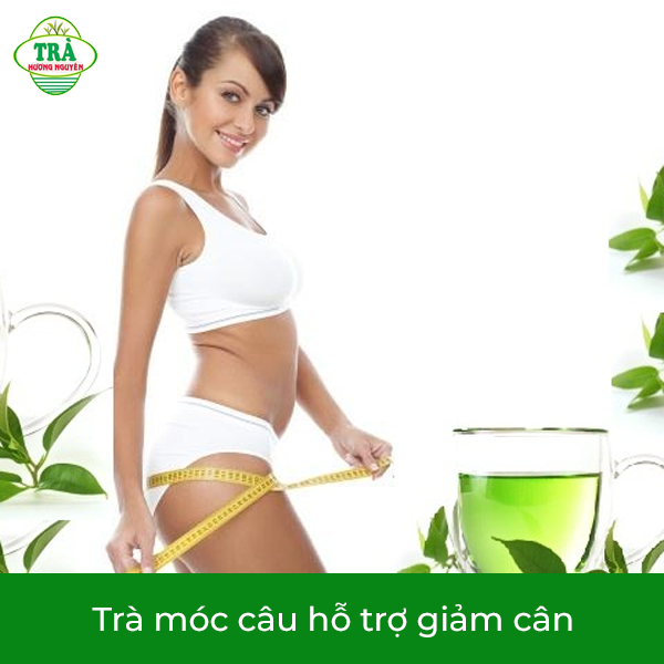 trà móc câu hỗ trợ giảm cân