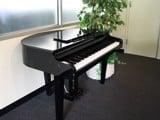 Đàn piano điện Grand