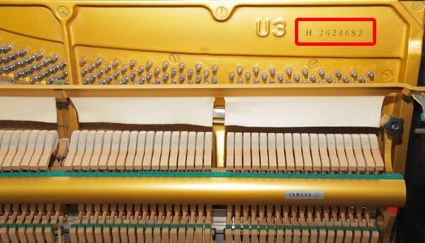 Số seri đàn upright Yamaha