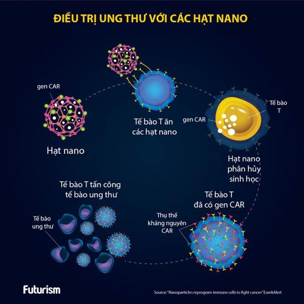 fucoidan nano 60 gói hạt nano điều trị ung thư