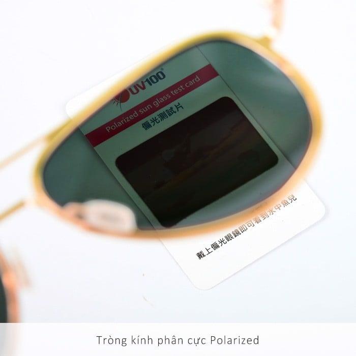 Kính chống tia UV chất liệu Polarized UV100 OB 20308