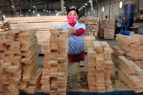 PM URGES MEASURES TO MAKE VIETNAM A WOOD EXPORT HUB