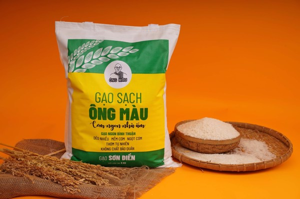 gao-sach-on g-mau-color-man-food