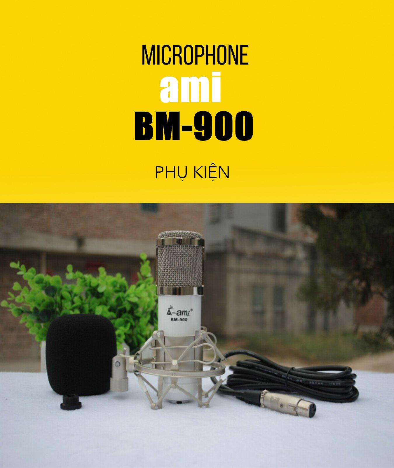 MICRO THU ÂM AMI BM900