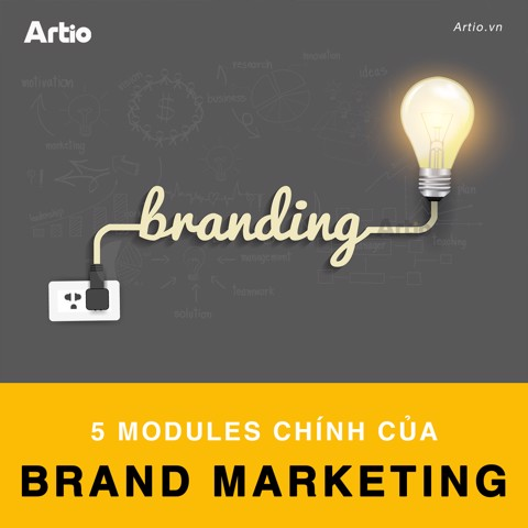 5 Modules chính của Brand Marketing | Artio Media