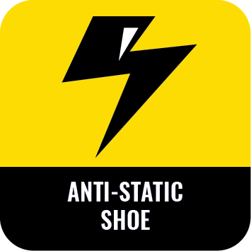 anti static shoe