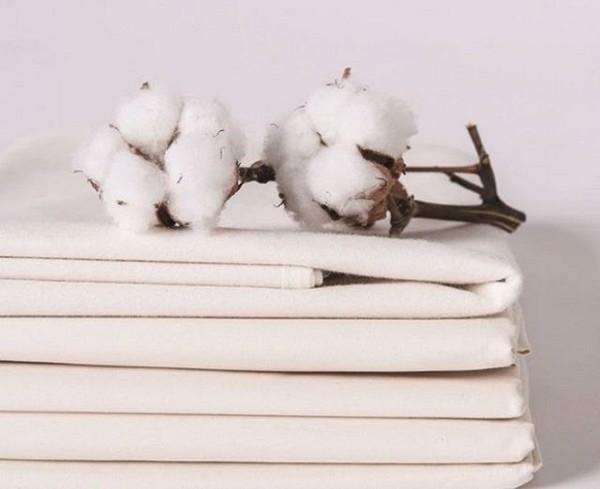 Bạn có biết chiếc áo phông coton 100% của fam thì chất liệu được làm từ đâu….????
