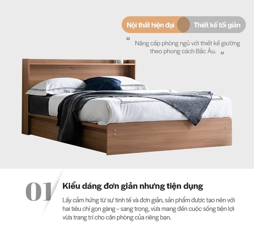 DB021 - GIƯỜNG NGỦ CAO CẤP SIZE QUEEN - CHI TIẾT 02