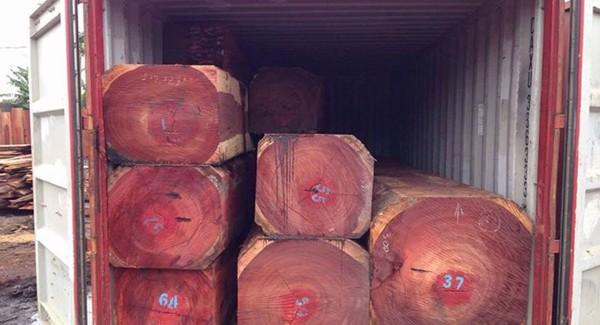 gỗ hương đỏ