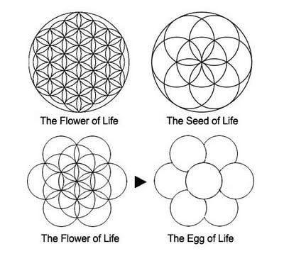 bông hoa sự sống platonic - năng lượng sống