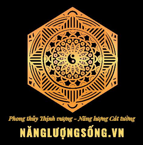 Logo nangluongsong.vn