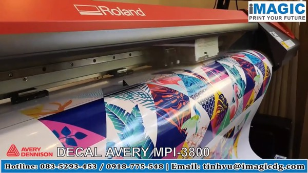 avery mpi3800, mpi-3800, decal avery, roland rf640, rf640, may in decal
