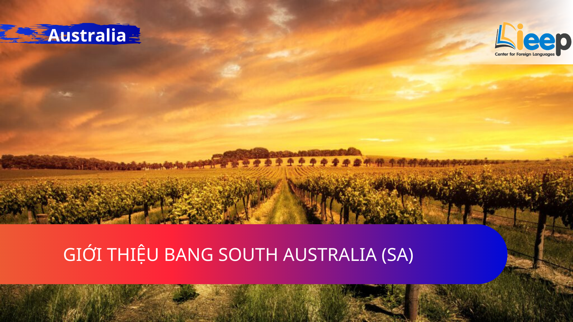 GIỚI THIỆU BANG SOUTH AUSTRALIA