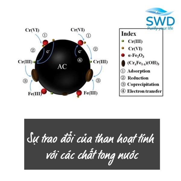 Sự trao đổi của than hoạt tính với các chất có trong nước