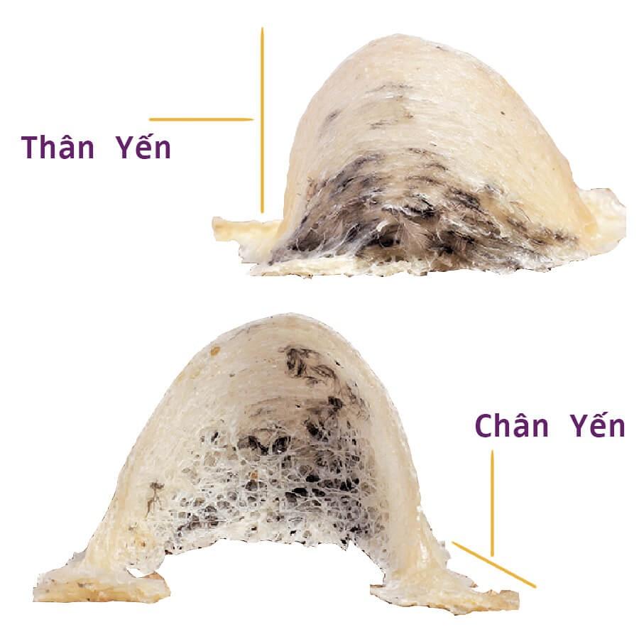 yen-tho-nguyen-to-chua-rut-long