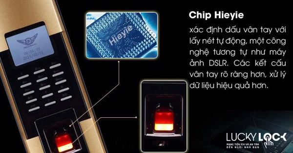 Chip vân tay khóa cửa vân tay Dessmann S510