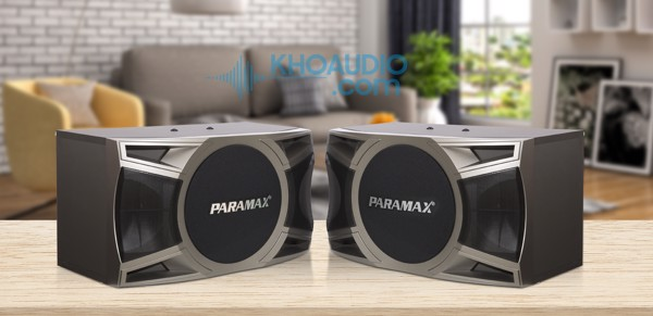 Loa karaoke Paramax D-1000 cao cấp