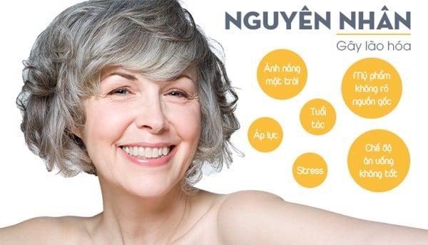 Có nhiều nguyên nhân dẫn đến lão hóa bao gồm cả bên trong và bên ngoài