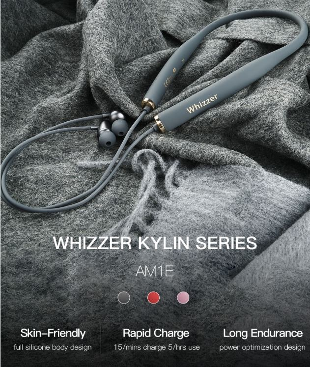 Whizzer AM1E