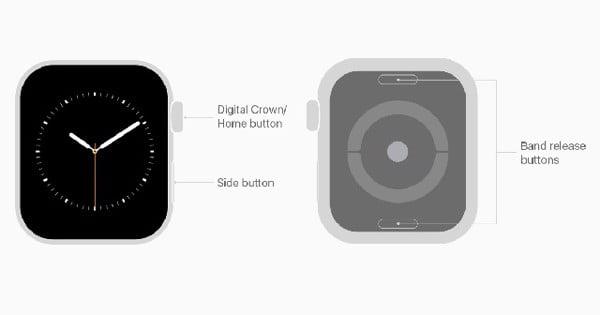 Nút Digital Crown và nút sườn trên Apple Watch