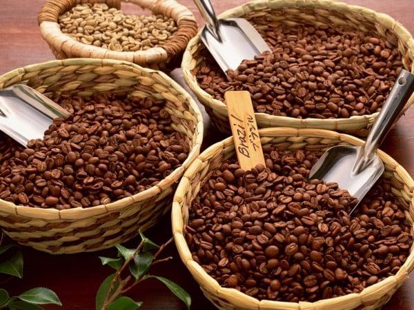 nhan-vien-pha-che-cafe