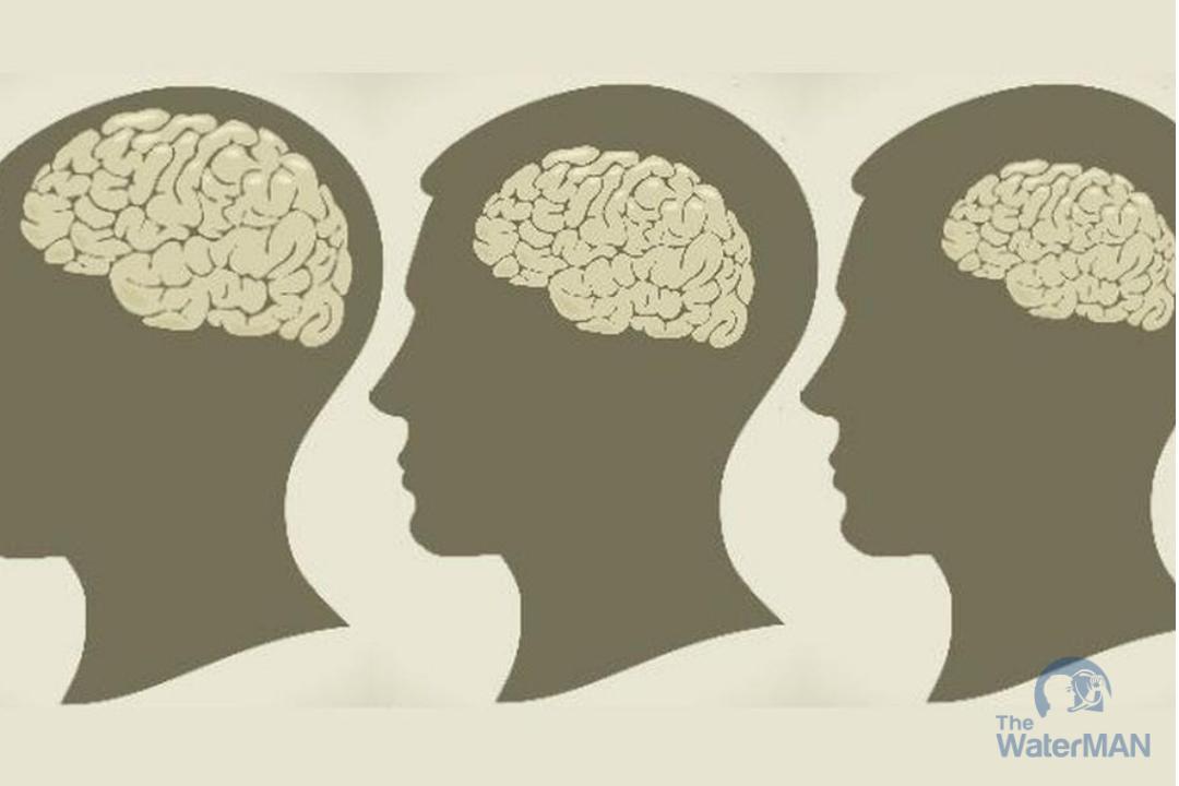 Thiếu nước trần trọng sẽ ảnh hưởng tới não