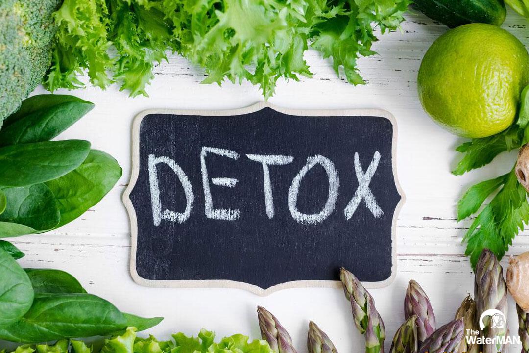 Thanh lọc cơ thể sẽ giúp độc tố tồn dư bên trong loại bỏ, quá trình tuần hòa máu và trao đổi chất hiệu quả hơn
