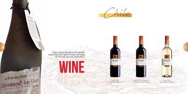 Rượu vang đến từ thương hiệu Chile – một thương hiệu lâu đời