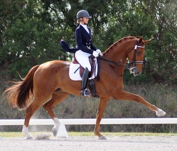 Trang phục cưỡi ngựa
