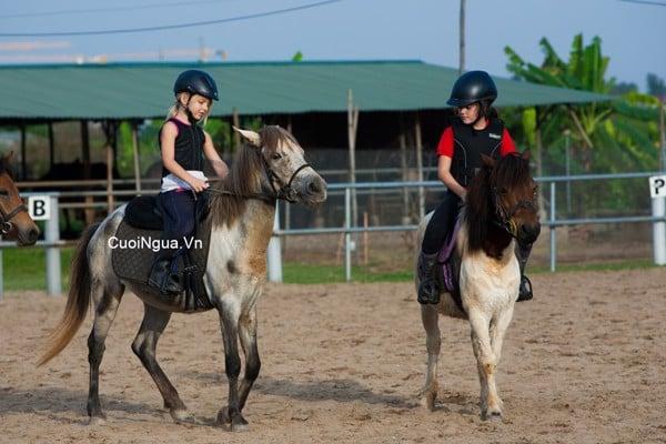 Học cưỡi ngựa - Hà Nội Pony Club