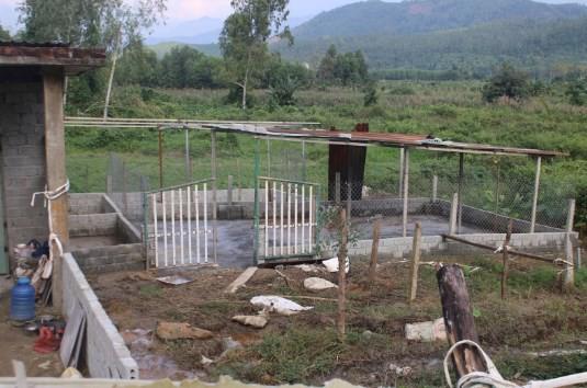 Xây dựng trái phép nhiều hộ dân ở Đà Nẵng 3