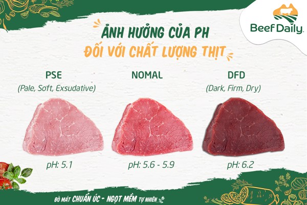 anh-huong-cua-ph-doi-voi-chat-luong-thit-bo