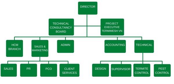 company organixation chart