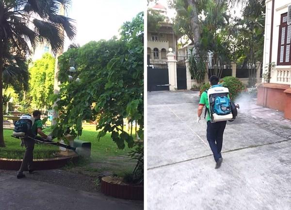 phun muỗi phòng sốt xuất huyết đại sứ quán nước ngoài tại Việt Nam