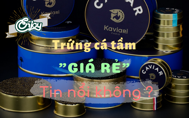 review-mot-so-loai-trung-ca-tam-gia-re-pho-bien-hien-nay