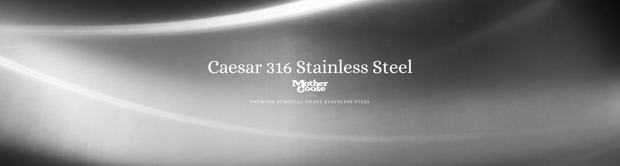 CAESAR 316 STAINLESS STEEL