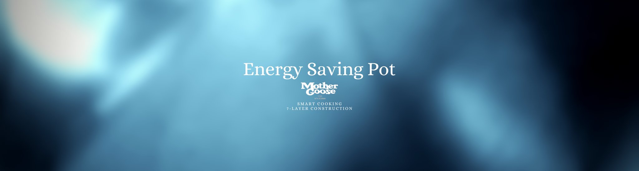 ENERGY SAVING POT