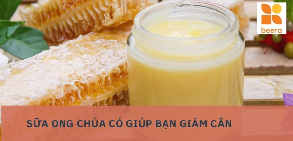 https://beera.asia/blogs/news/sua-ong-chua-co-the-giup-ban-giam-can